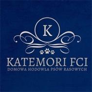 Katemori FCI